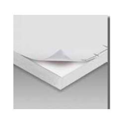 Carton Pluma adhesivo Blanco